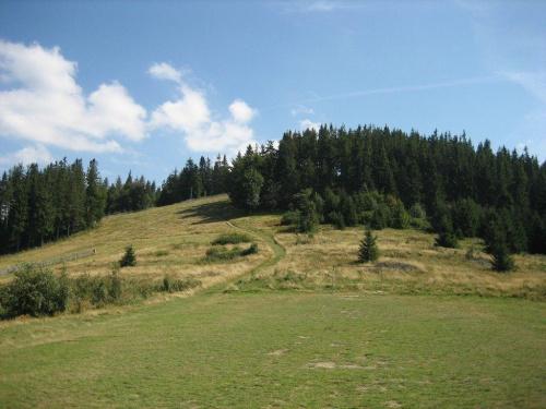 polana-boisko na południowym stoku Rachowca #Beskidy #BeskidŻywiecki #WorekRaczański #Rachowiec #polana