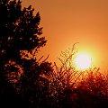 zachod #natura #niebo #slonce #zachod