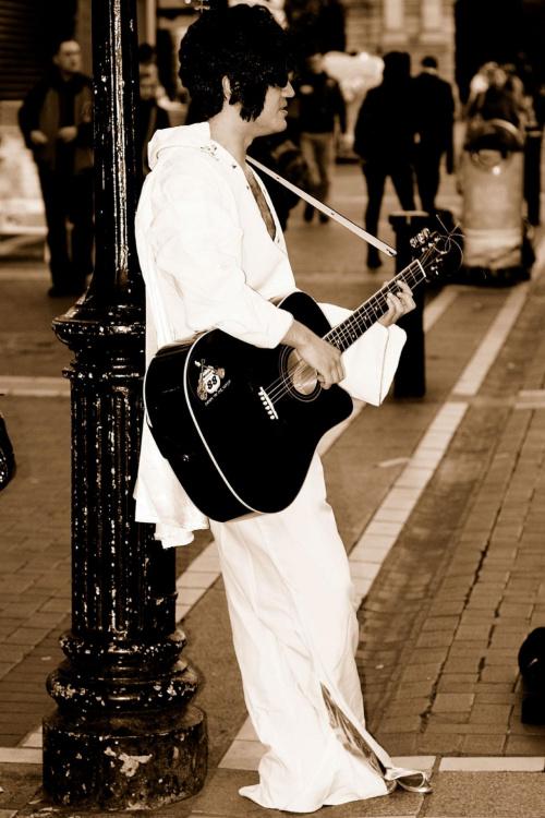 Elvis ma już dość #ElvisUlicaGitara