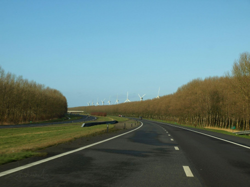 Droga, Holandia [Olympus E-410, Zuiko Digital Tele 70-300] #droga #zakręt #Holandia #wiatraki
