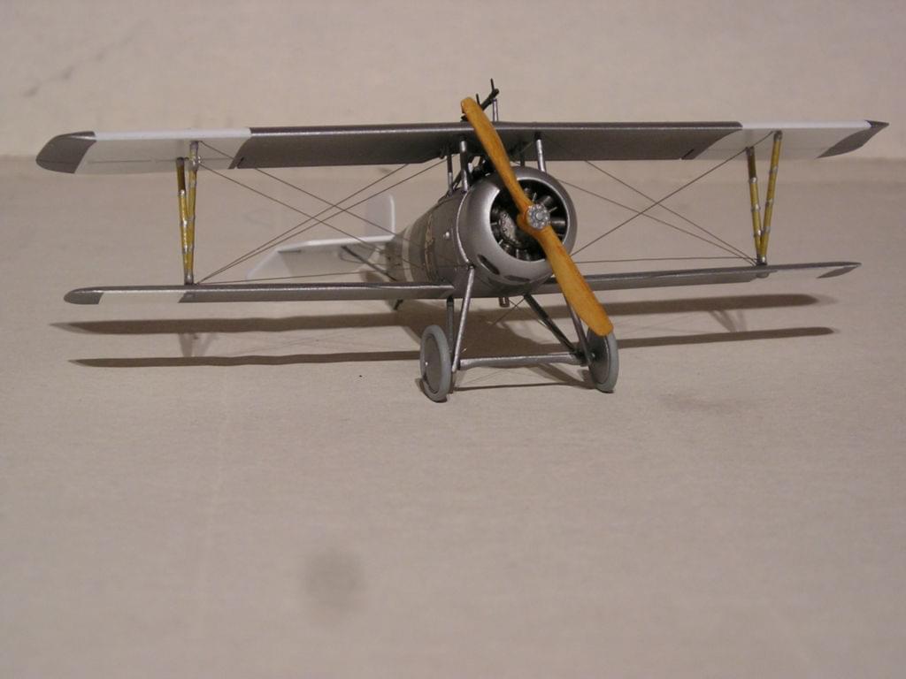 Nieuport Ni.24bis - Roden 1/72 my first 2013 9b927a51ccf7f4a0