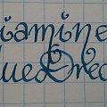 #atrament #blue #diamine #dream #ink #pióro #pwf