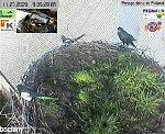 http://images41.fotosik.pl/227/def0b55980655c20m.jpg