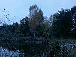 images41.fotosik.pl/231/58df06964e1a56bam.jpg