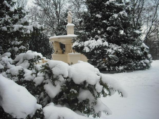 zima w parku. #zima #park #śnieg