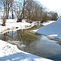 Lesk pod Jaczkowem. #Rzeki #krajobrazy #przyroda