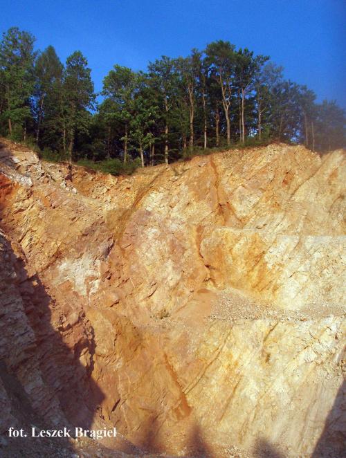 Góry Wiatrogrodzkie Kamieniołom Krowiarki aIIb 8.06.2010 fot. Leszek Brągiel