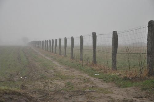 A gdzieś tam na końcu... #pola #płoty #mgła #granice