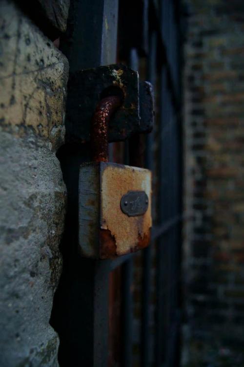 #ściana #mur #cegły #trzemeszno