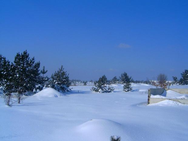 Zima w Osieku/k.Olkusza słoneczny dzionek #drzewa #działka #gladz #gładkośc #gładź #ŁadnyDzień #mroz #mróz #natura #niebo #piękno #pole #połac #slonce #słońce #snieg #spokój #szron #widok #zaspy #zima