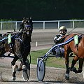 Gonitwa #gonitwa #klusaki #konie #tor #wyscigi