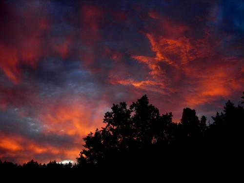 Zagórze Lubiewskie #las #lubuskie #niebo #wakacje #zachód #lato