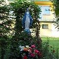 Foto: R.Kaczmarek - Sokolniki Wielkie,; figura Matki Boskiej uratowana od zapomnienia. #architektura #GminaKaźmierz #figura #PowiatSzamotulski #przyroda #SokolnikiWielkie #wieś #świątki #wiara #religia #ParafiaKaźmierz